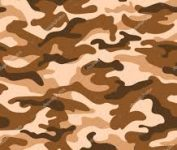 Marron camouflage